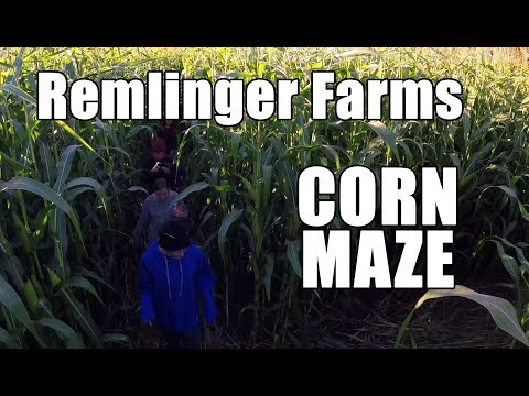 Corn Maze at Remlinger Farms in Carnation, Washington