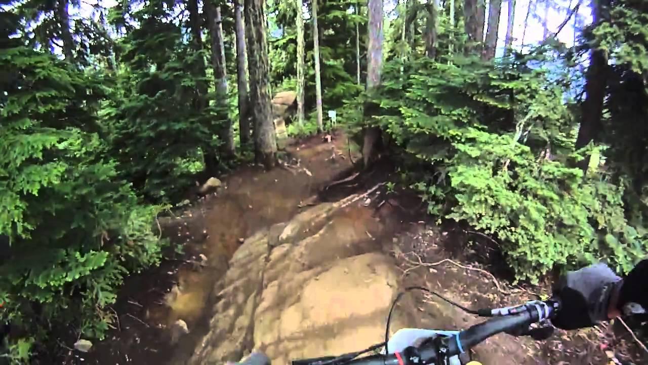 Whistler Downhill Bear On Mtb Trail Youtube
