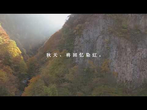 飛騨国 下呂の旅 秋 三世代30(簡体)