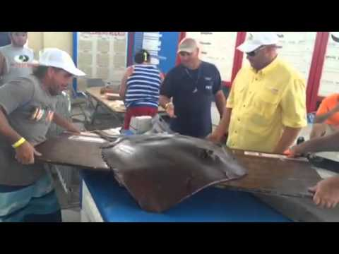 Mississippi Deep Sea Fishing Rodeo Kicks Off First Day