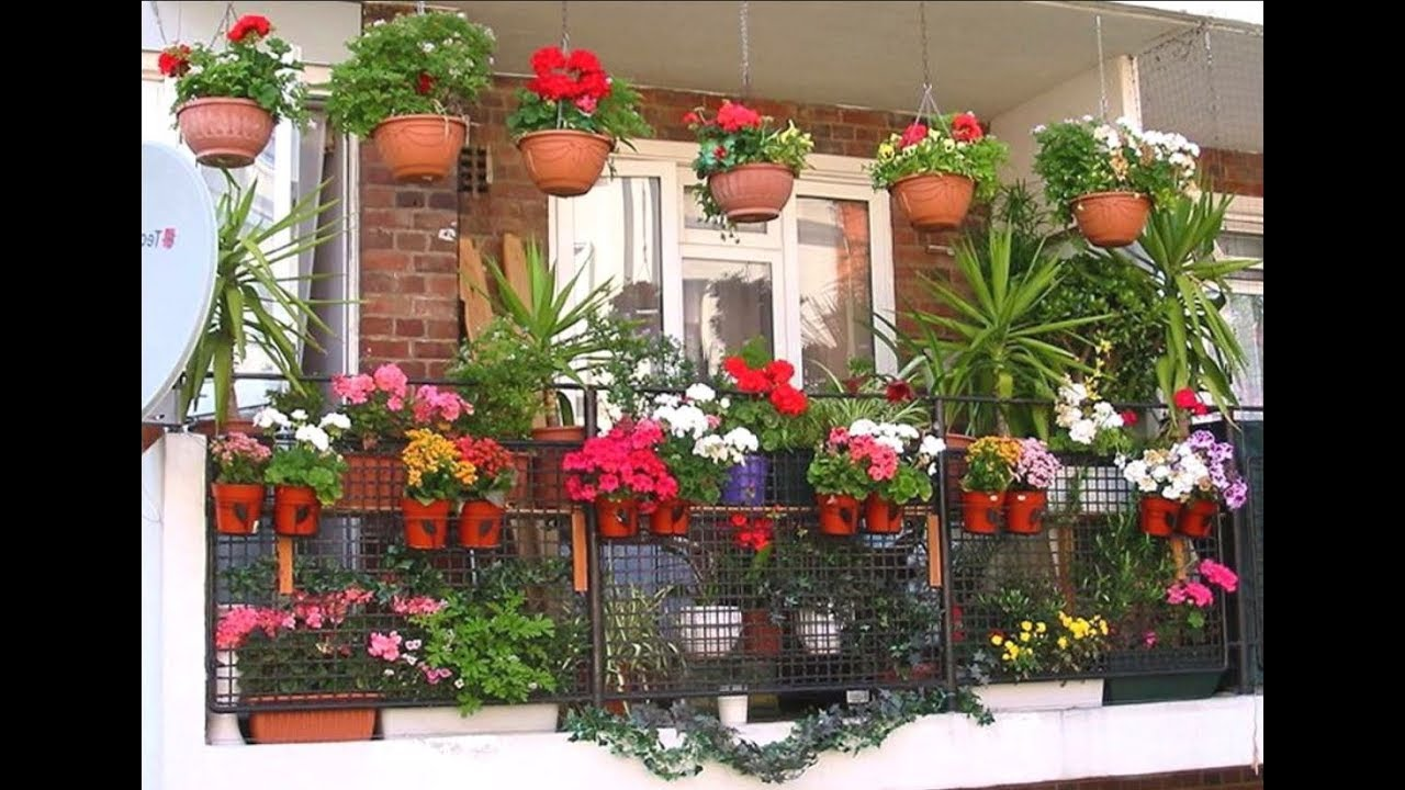 70 Creative Home Gardening Ideas Small Garden Design Ideas Youtube - Small-gardens-idea