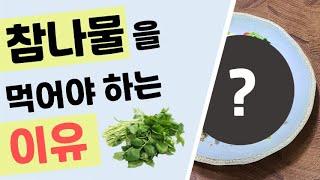 성인병 예방에 도움이 되는 참나물, 어떻게 먹을까?