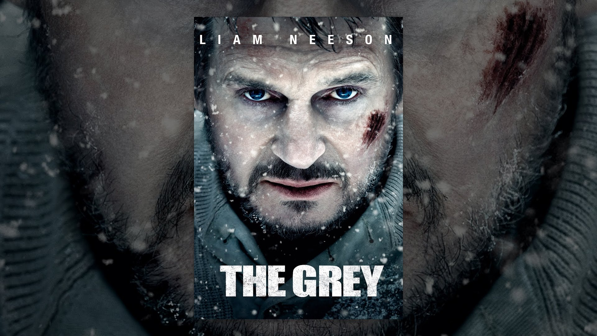 Image Result For The Grey
