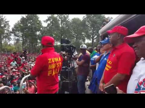 Julius Malema insults President Jacob Zuma