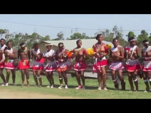 Zulu maidens from KwaSanguye dancing during Umkhosi Woswela