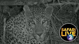 safariLIVE on SABC 3 S1 - Episode 1