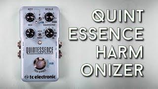 TC Quintessence Review - Intelligent Harmonizing for under 200 bucks!