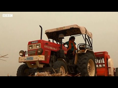 Smog: Young Indian Farmer Amandeep Kaur has a solution to reduce air pollution - BBCURDU