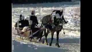 Белая лошадь конноспортивный клуб, выходные в русском стиле.(, 2013-08-09T16:12:05.000Z)