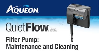 QuietFlow Filter Pump Maintenance