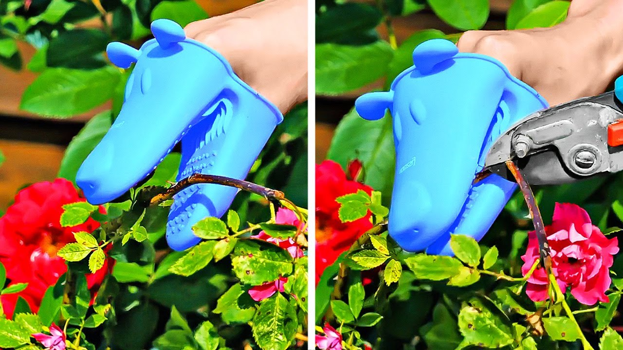 Clever Growing Plant Hacks And Easy Garden Organization Ideas
