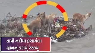 Heavy to heavy rainfall is forecast for next 48 hours in Gujarat