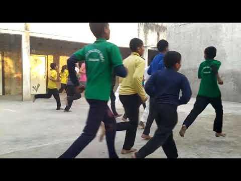Neo Karate Academy training activity