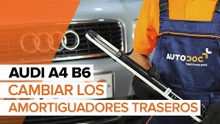 Cómo cambiar los amortiguadores traseros en AUDI A4 B6 [INSTRUCCIÓN]