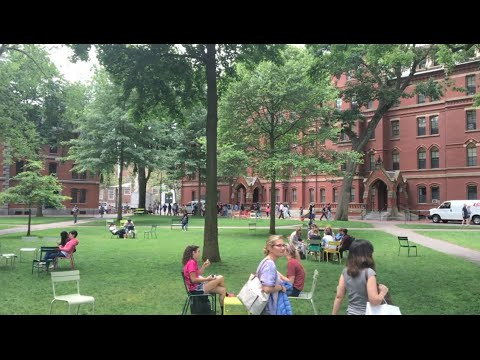 VISITING HARVARD! Campus Tour and University Review - Applyi
