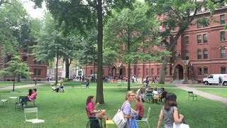 VISITING HARVARD! Campus Tour and University Review - Applying to Colleges #1