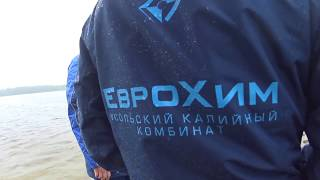 видео Новости: Рыба