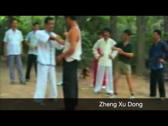 Zheng Xu Dong - Applications (Qinna 擒拿) Tai Chi style Chen Laojia [陈氏太极拳老架 Taijiquan style Chen]