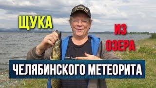 Щука из озера Челябинского метеорита