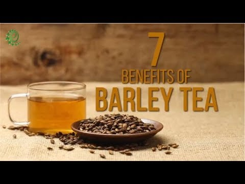 7 Reasons Why You Should Add Barley Tea To Your Diet | Organic Facts