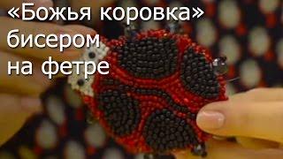 «Божья коровка» бисером на фетре- Видео Мастер-класс(http://leonardo.ru/mclasses/83/bozhiya-korovka/ На видео уроке по вышевке бисером, вы научитесь как вышить оригинальную брошь..., 2013-11-19T10:52:21.000Z)