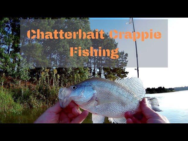 Lake Holcomb Chatterbait Crappie Fishing