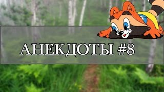 Анекдоты пока нет Енота 8 #НовостиОтЕнота