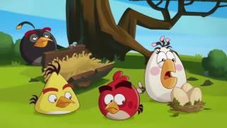 Злые птички - Энгри Бердс - Икота (S1E42) || Angry Birds Toons