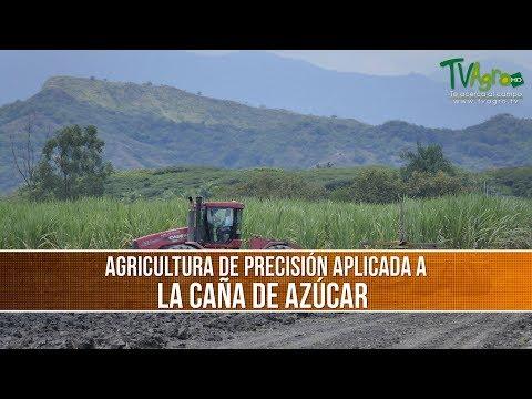 agricultura-de-precision-aplicada-a-la-caña-de-azucar--tvagro-por-juan-gonzalo-angel