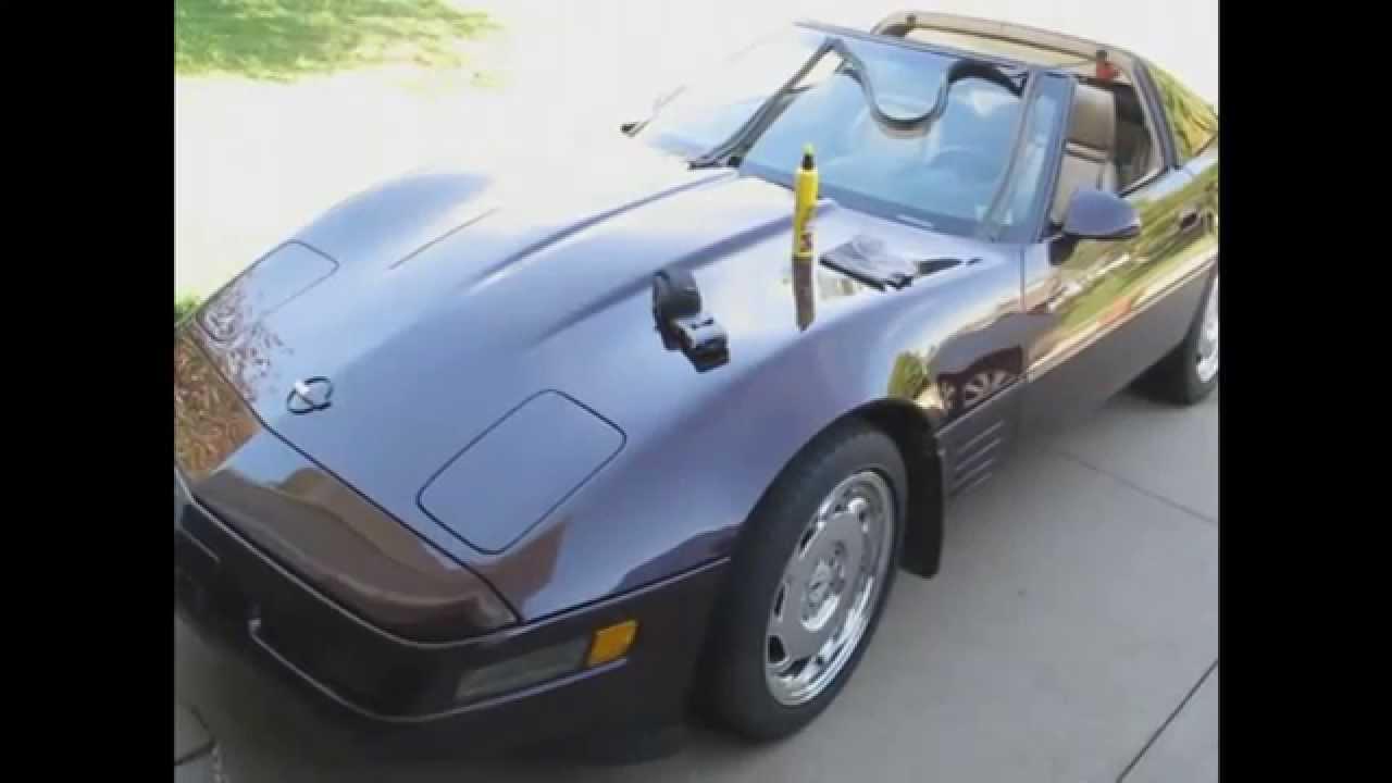 1984 thru 1996 C4 Corvette Coupe  Rear Hatch Weatherstrip Seal ZR1 1995 1994