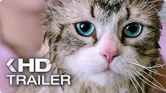 NINE LIVES Exklusiv Trailer German Deutsch (2016)