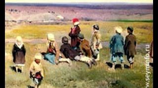 «Земская реформа» (выпуск 5)