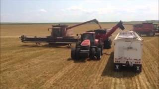 Westlake Harvesting 2013 USA Wheat Run