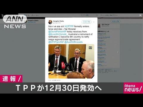 米国除く11か国によるTPP 12月30日発効へ(18/10/31)