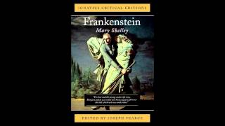 an analysis of the creators faults in frankenstein by mary shelley Mary shelley's frankenstein critical analysis name institution mary shelley's frankenstein critical analysis naomi creator and created in mary shelley.