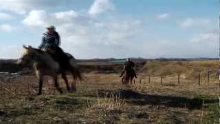 Horse Trail in Abashiri Hokkaido Japan -No Name Ranch-