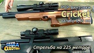 Пневматика Cricket и стрельба на 225 метров (ТВ-программа)(, 2015-06-18T07:37:23.000Z)