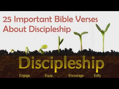 25 Important Bible Verses About Discipleship