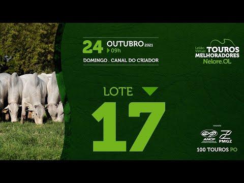 LOTE 17 - LEILÃO VIRTUAL DE TOUROS MELHORADORES  - NELORE OL - PO 2021