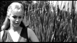 MOVIES YOU MUST WATCH BEFORE YOU DIE   Lilith 1964