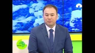 Алматада өткөн информатика боюнча олимпиаданын жеңүүчүлөрү конокто