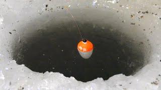 В ЭТУ ЛУНКУ ОГРОМНЫЙ КАРАСЬ УТАЩИЛ ПОПЛАВОК Зимняя рыбалка 2020