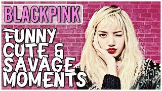 Download BLACKPINK FUNNY CUTE & SAVAGE MOMENTS  [Try Not To Smile Challenge] Mp3 and Videos