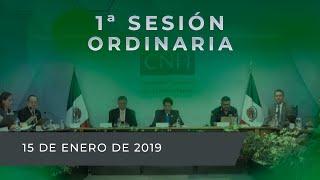 1-sesin-ordinaria-de-2019-del-rgano-de-gobierno-cnh-15ene2019