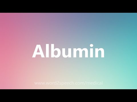 Albumin - Medical Meaning