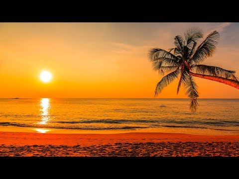 Deep Sleep Music 24/7, Relaxing Music, Sleep Meditation, Calming Music…