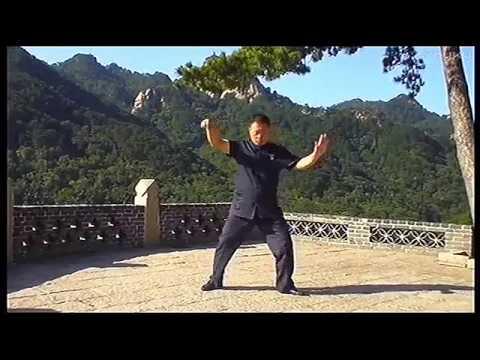 Yang shi neigong laoliulu Tai Chi