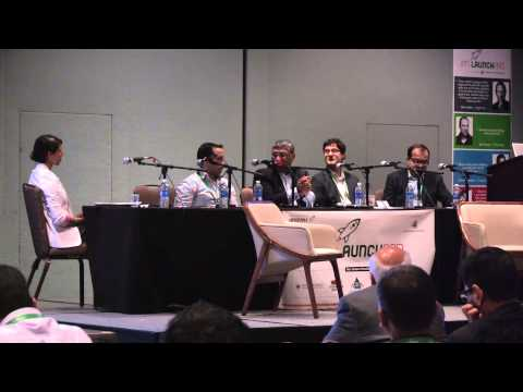 IPN LaunchPad 2014: Panel – Startup Trends & Emerging Industries