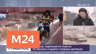 В столице действует оранжевый уровень погодной опасности - Москва 24