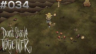 DON'T STARVE TOGETHER #034: Bienenzüchter [HD+] | Let's Play Don't Starve